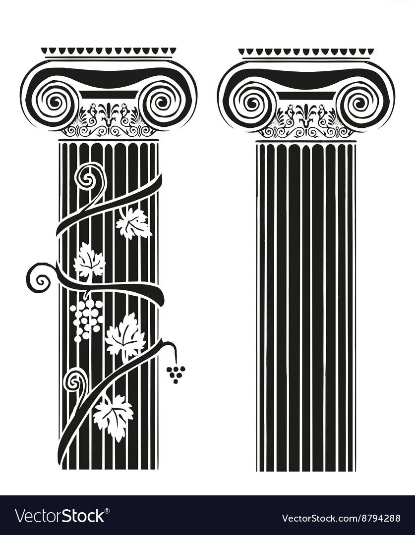 Two columns with grapes vector image