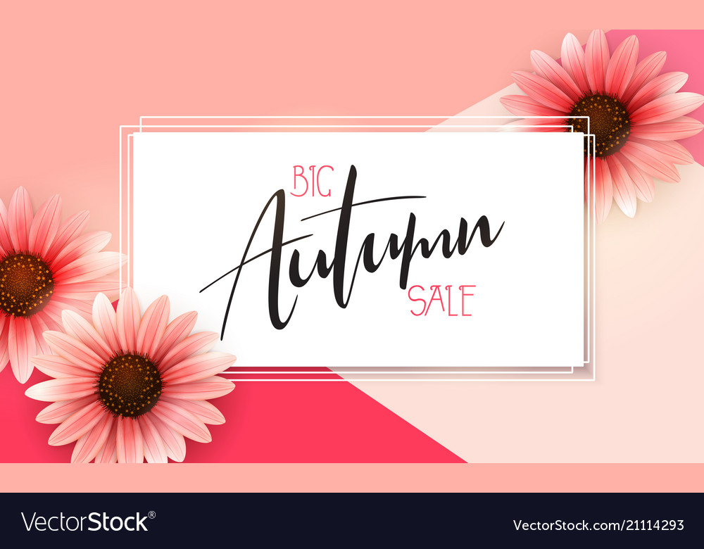 Autumn sale banner with hand drawn