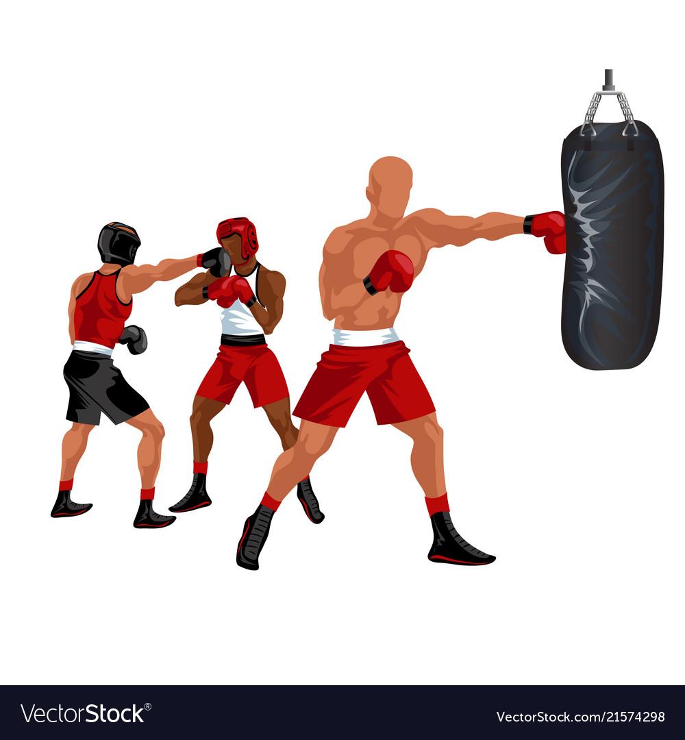 Sportsman boxing punching bag professional boxer