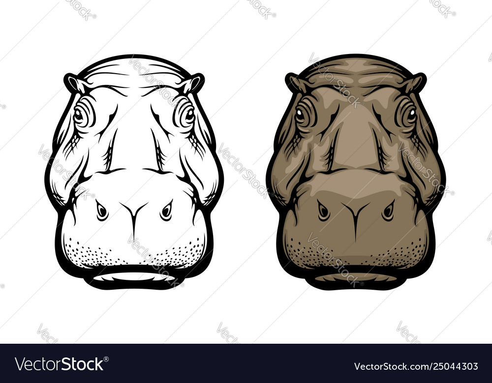 Hippopotamus hippo wild african animal face icon