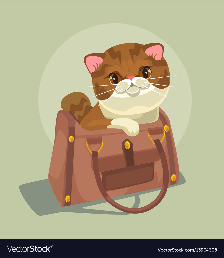Small cat character sitting lady bag