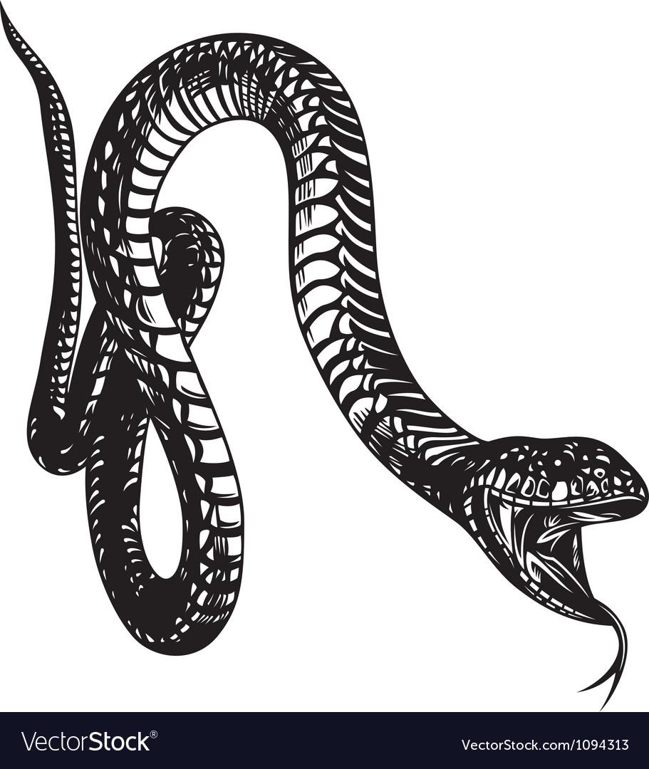 big snake royalty free vector image vectorstock rh vectorstock com vector snake vector snake