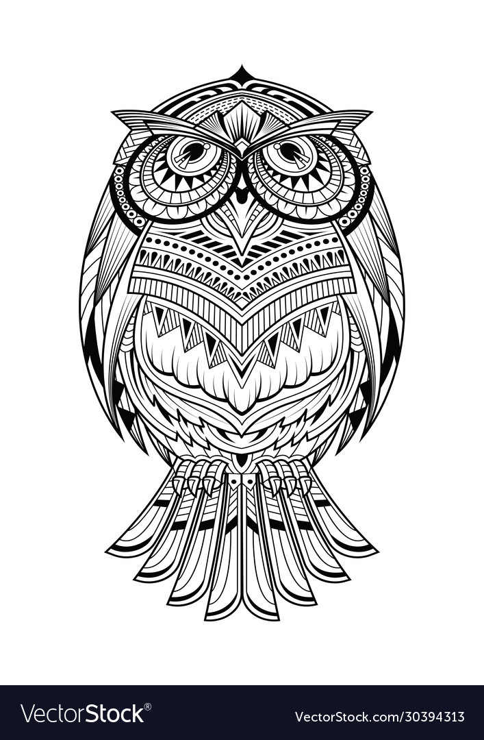 Owl animal coloring page