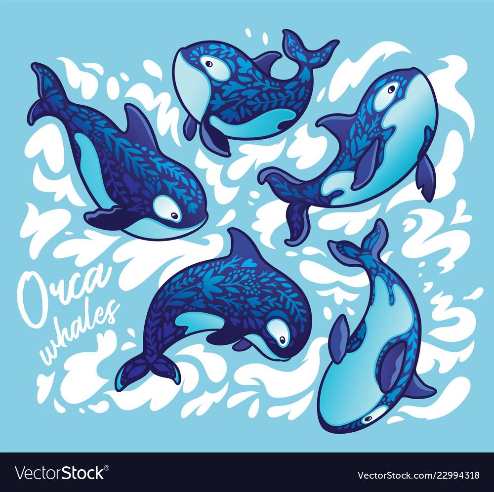Ocean animal orca whale decoration floral art