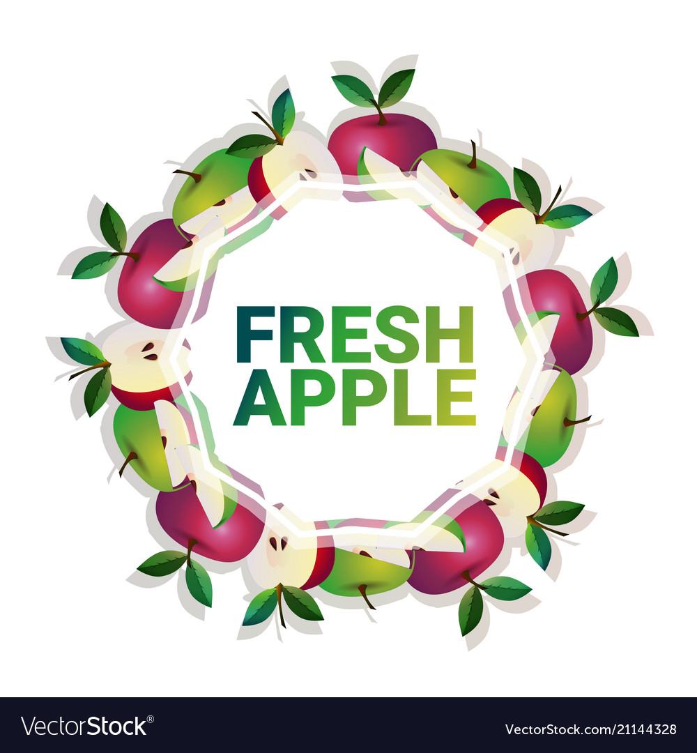 Apple fruit colorful circle copy space organic