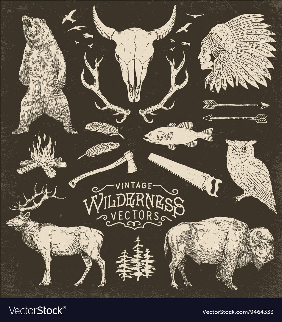 Vintage wilderness set