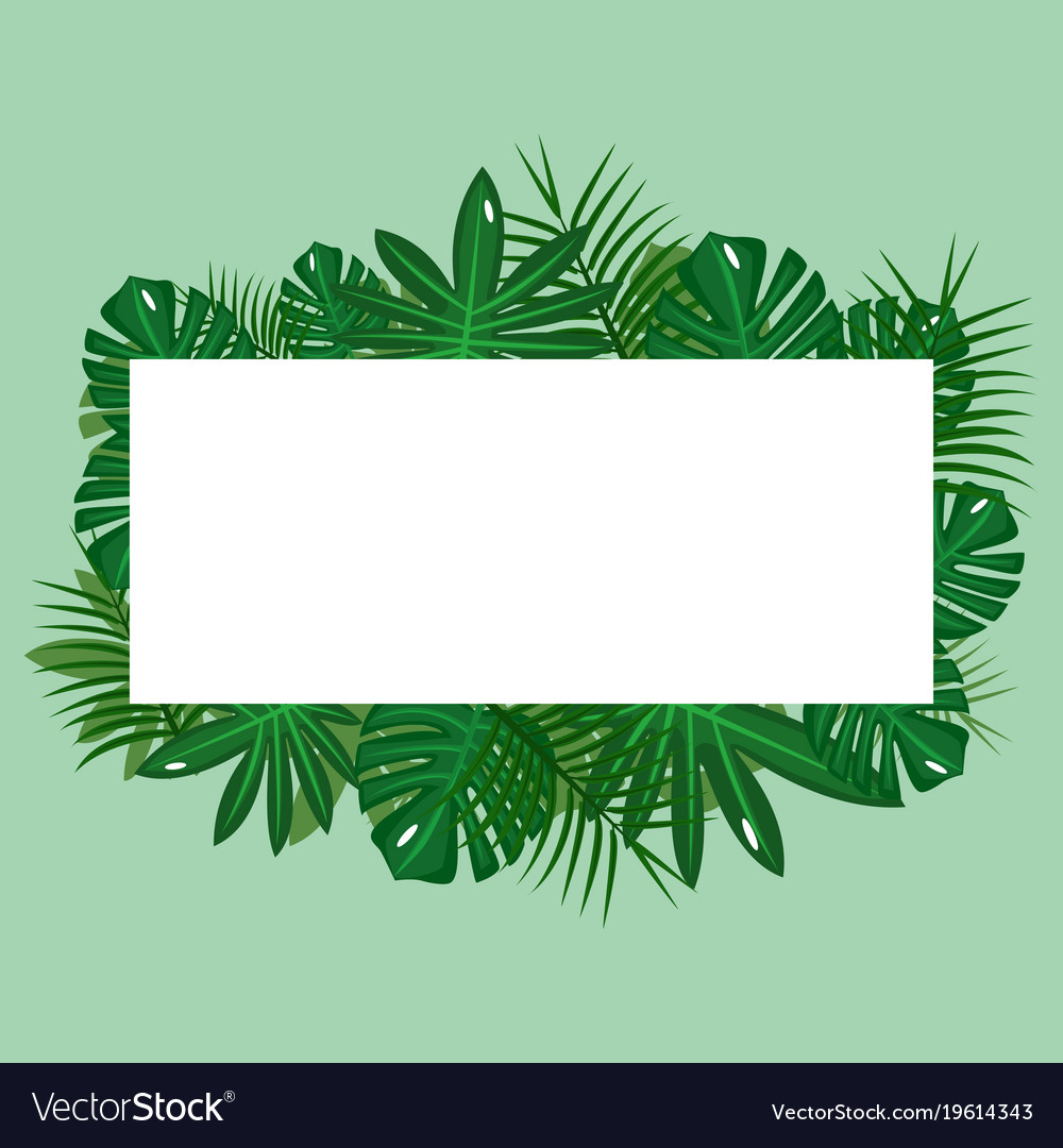 Green tropical leaves on green background with