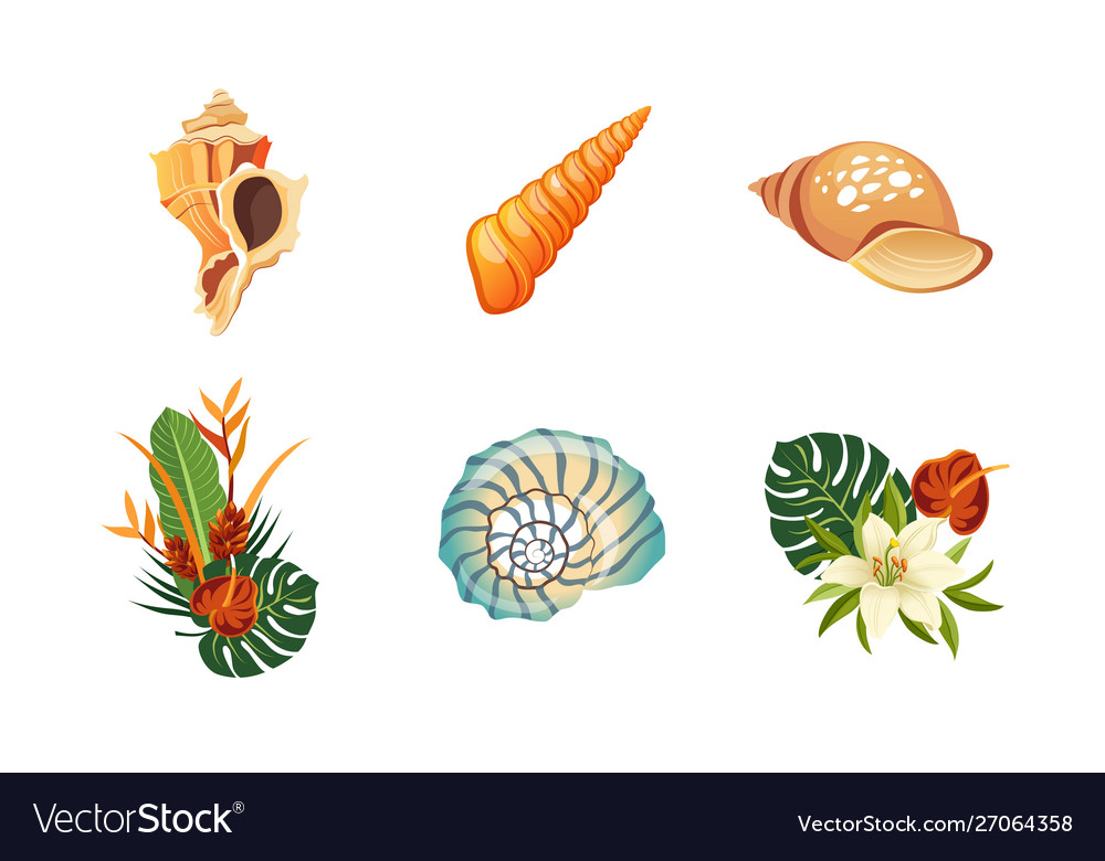 Sea shells palm leaves and flowers set summer