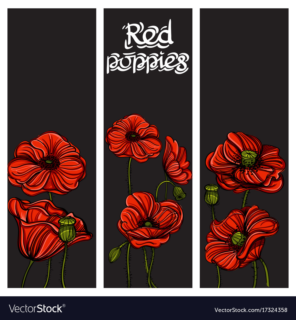 Set ve tor vertical banners with hand drawn red
