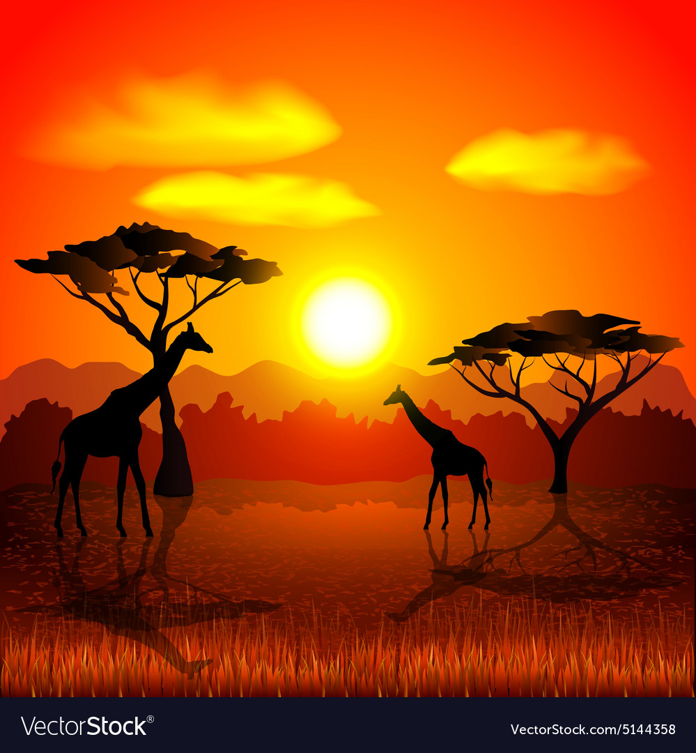 Sunset In African Savannah Background Royalty Free Vector
