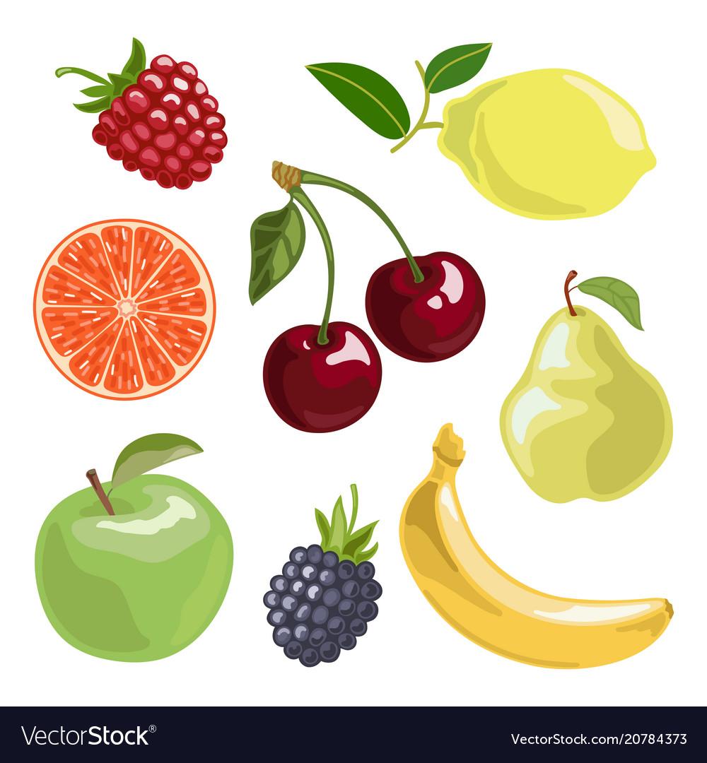 The fruit set in cartoon