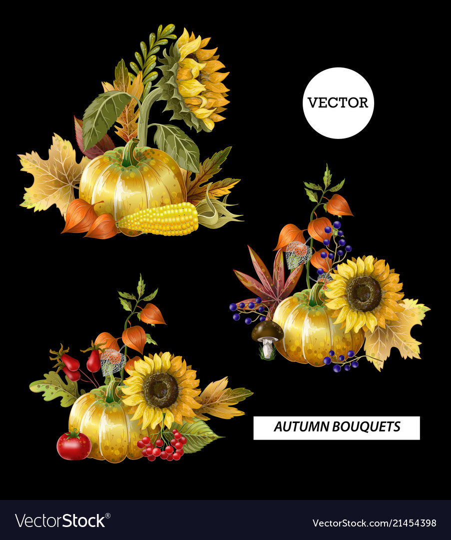 Bouquets of autumn leaves fruits berries