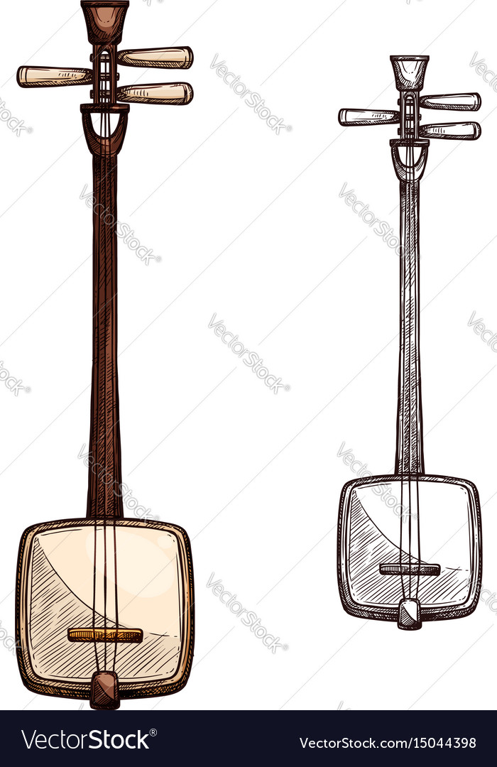 Sketch japanese string music instrument vector image
