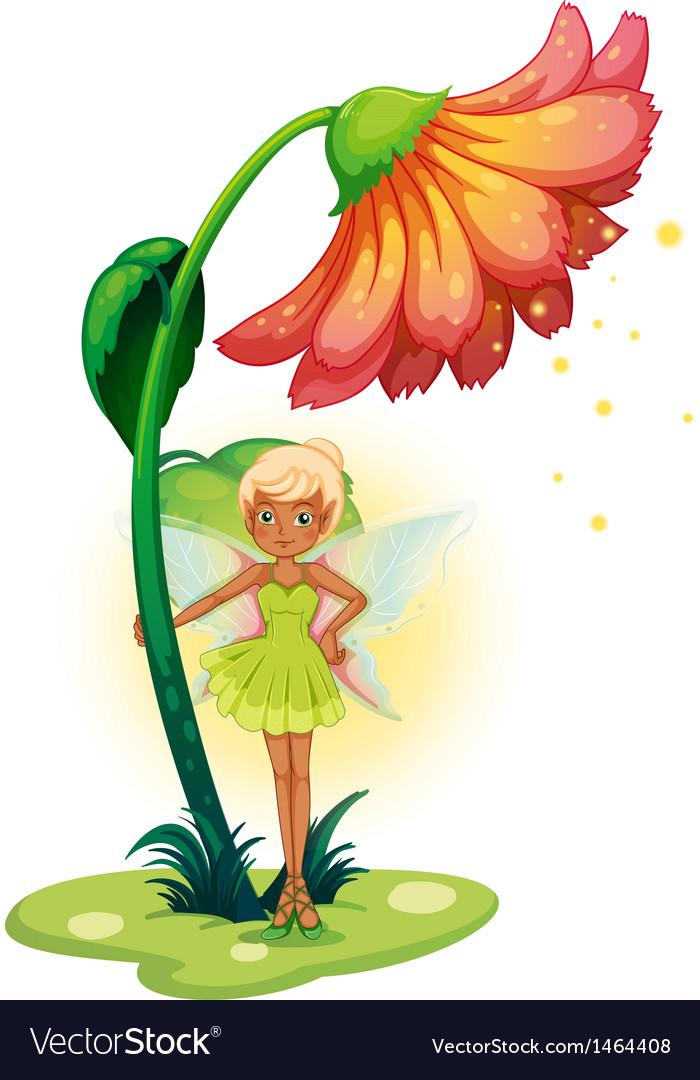 A fairy standing below the flower