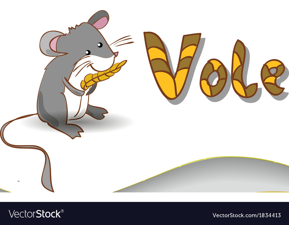 Animal alphabet letter V and vole vector image