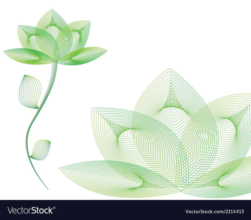 Green spa flower vector image