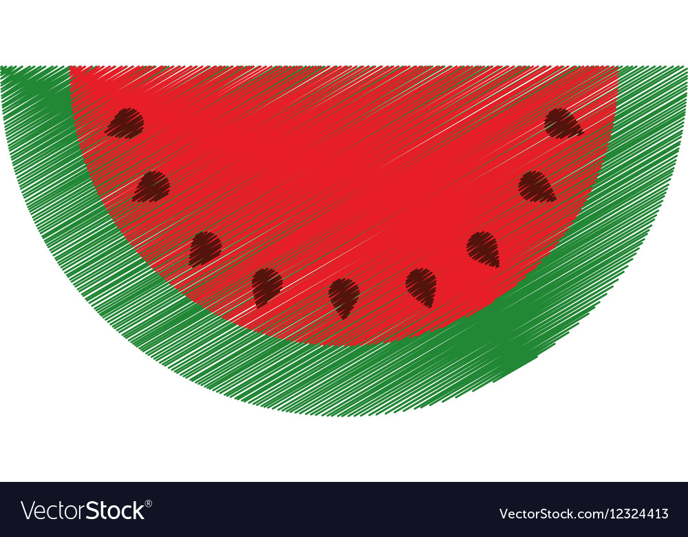 Watermelon Drawing Pictures