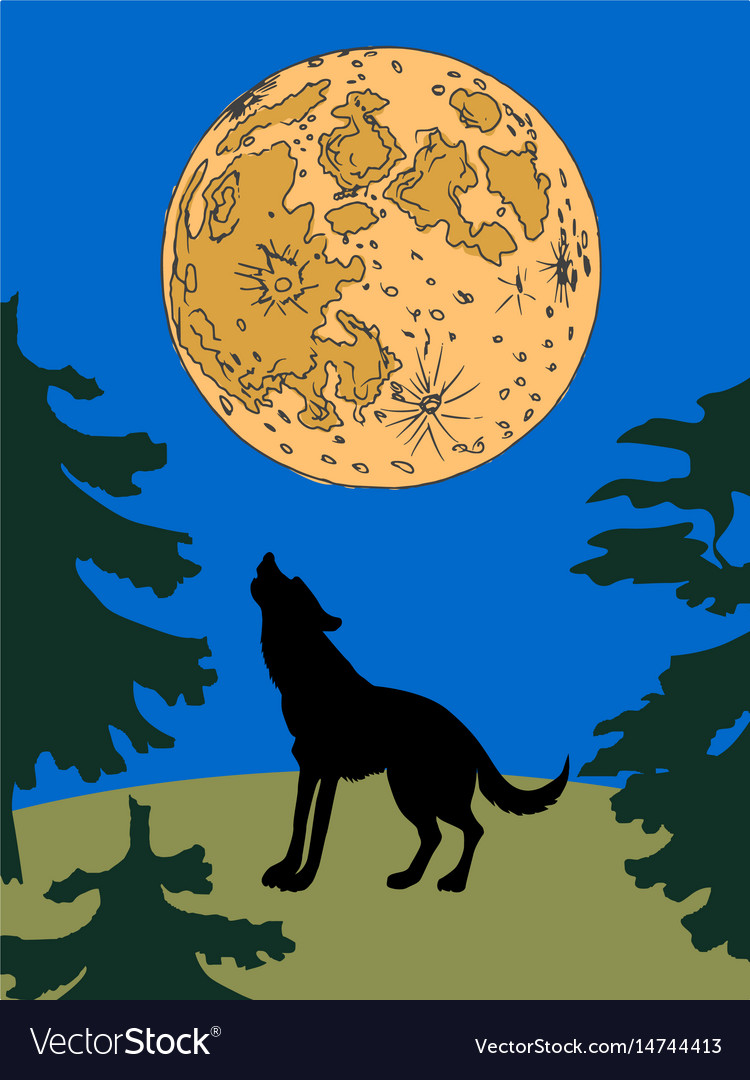 Wolf at night vector image