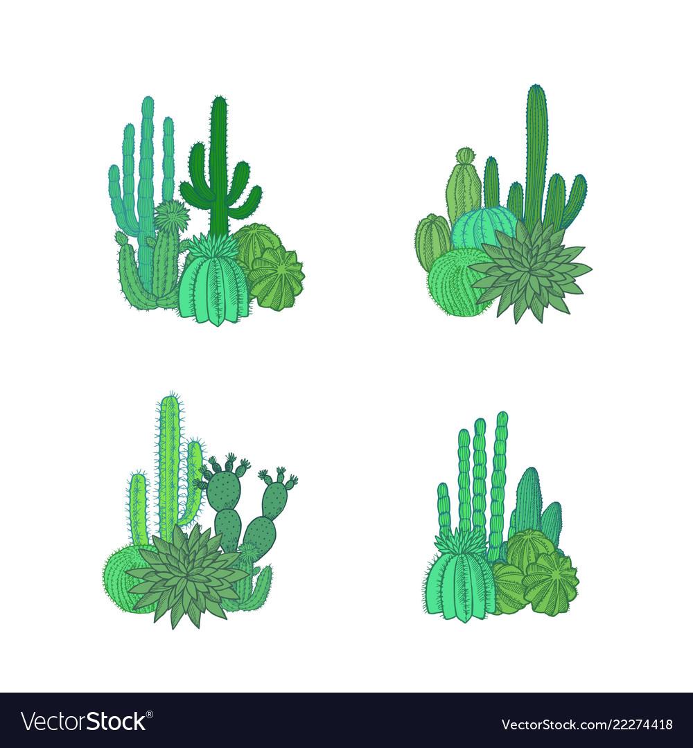 Hand drawn desert cacti plants piles set