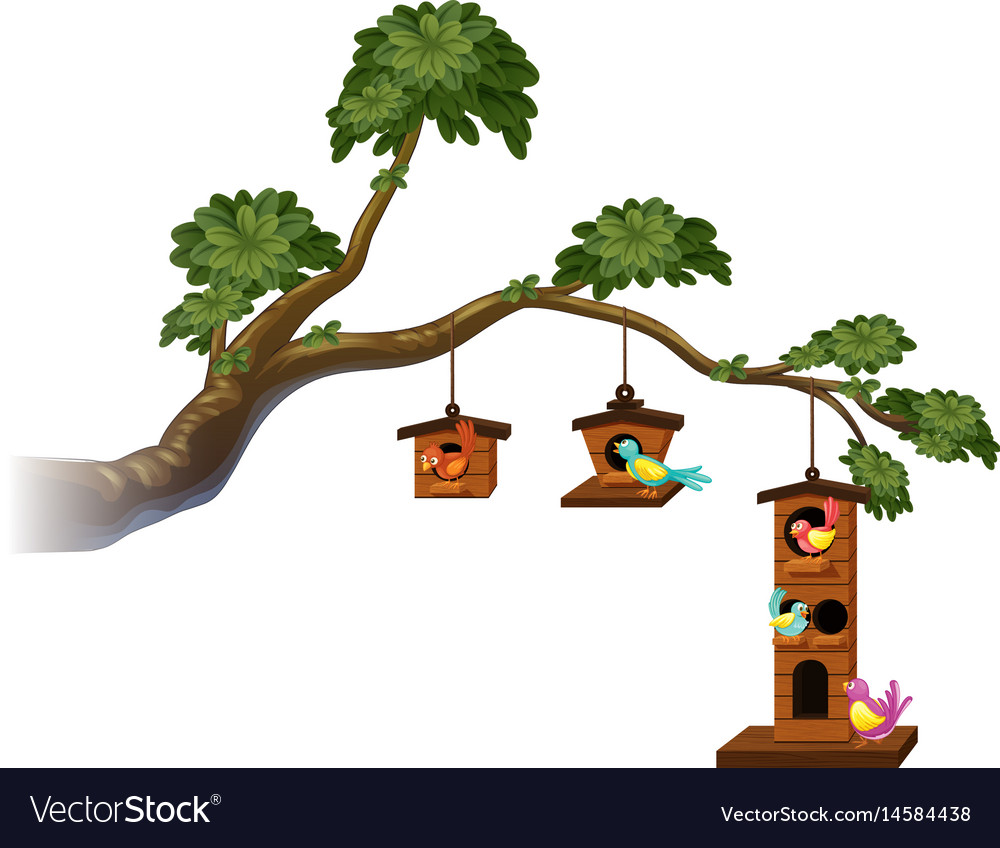 Birdhouses with birds on the branch vector image