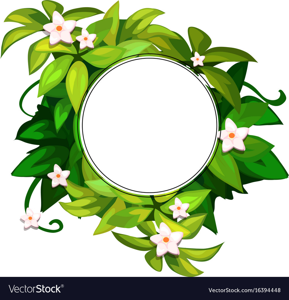 Wreath of white flowers on green leaves