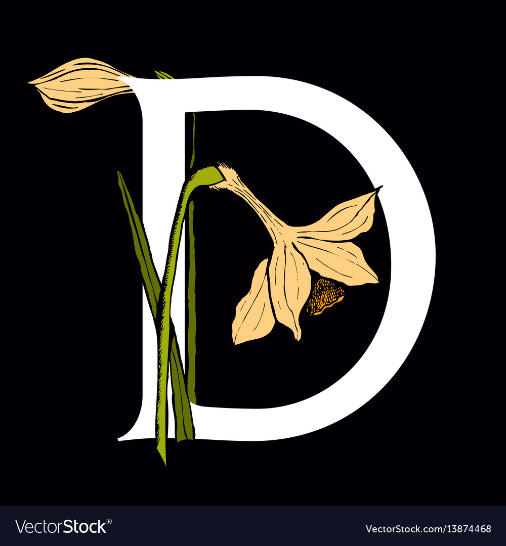 Letter d with daffodil flower