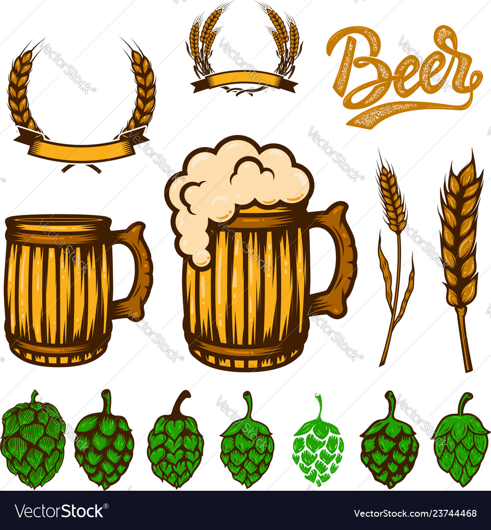 Set of beer design elements wheat spikelets beer
