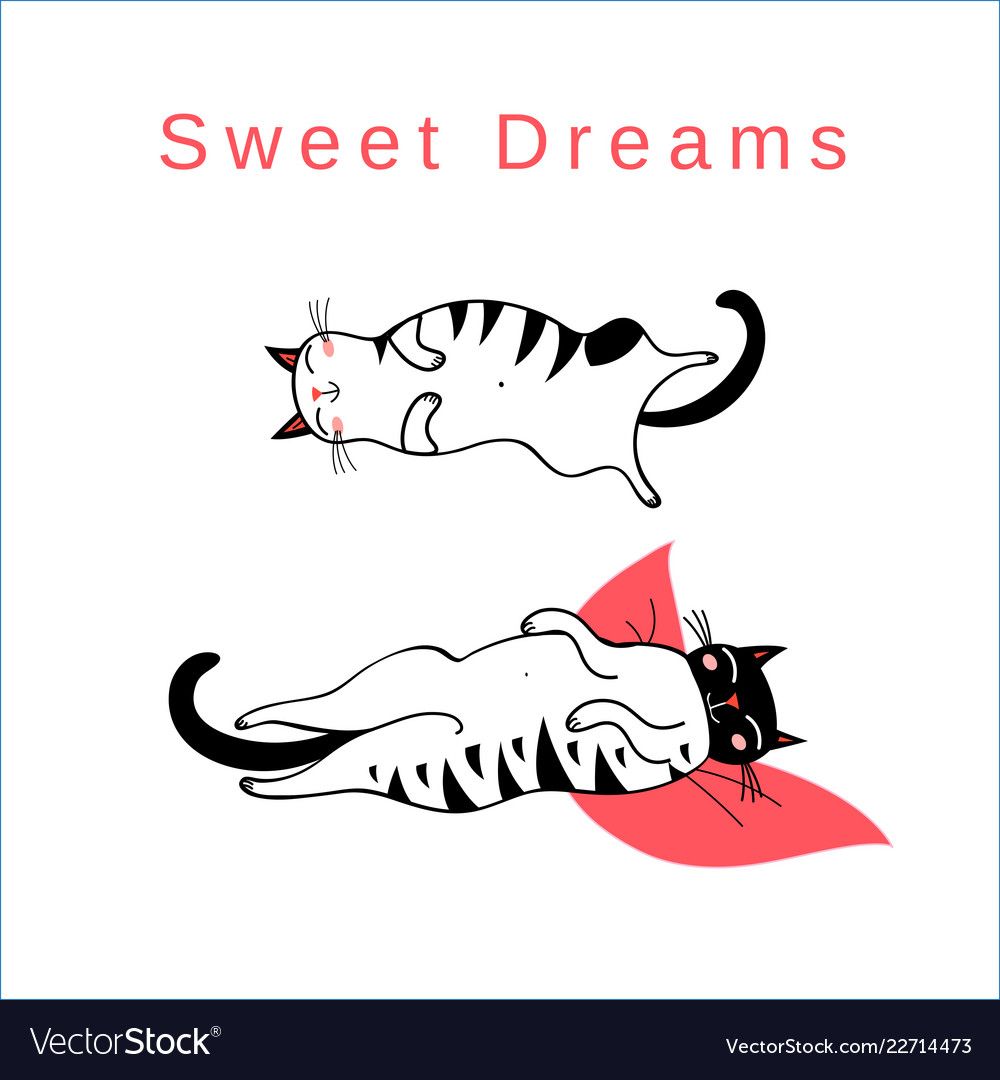 Funny card with sleeping graphic cats