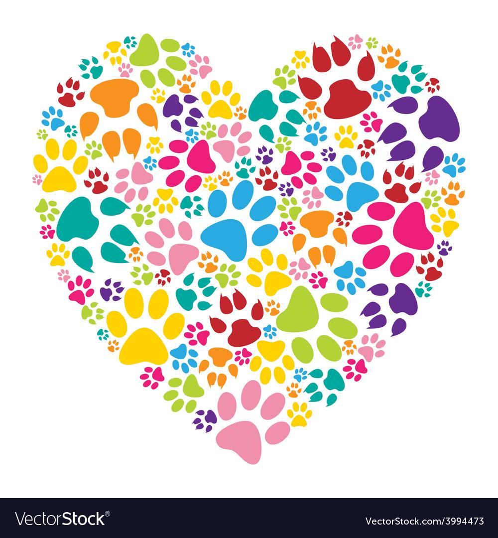 Heart paw print vector image