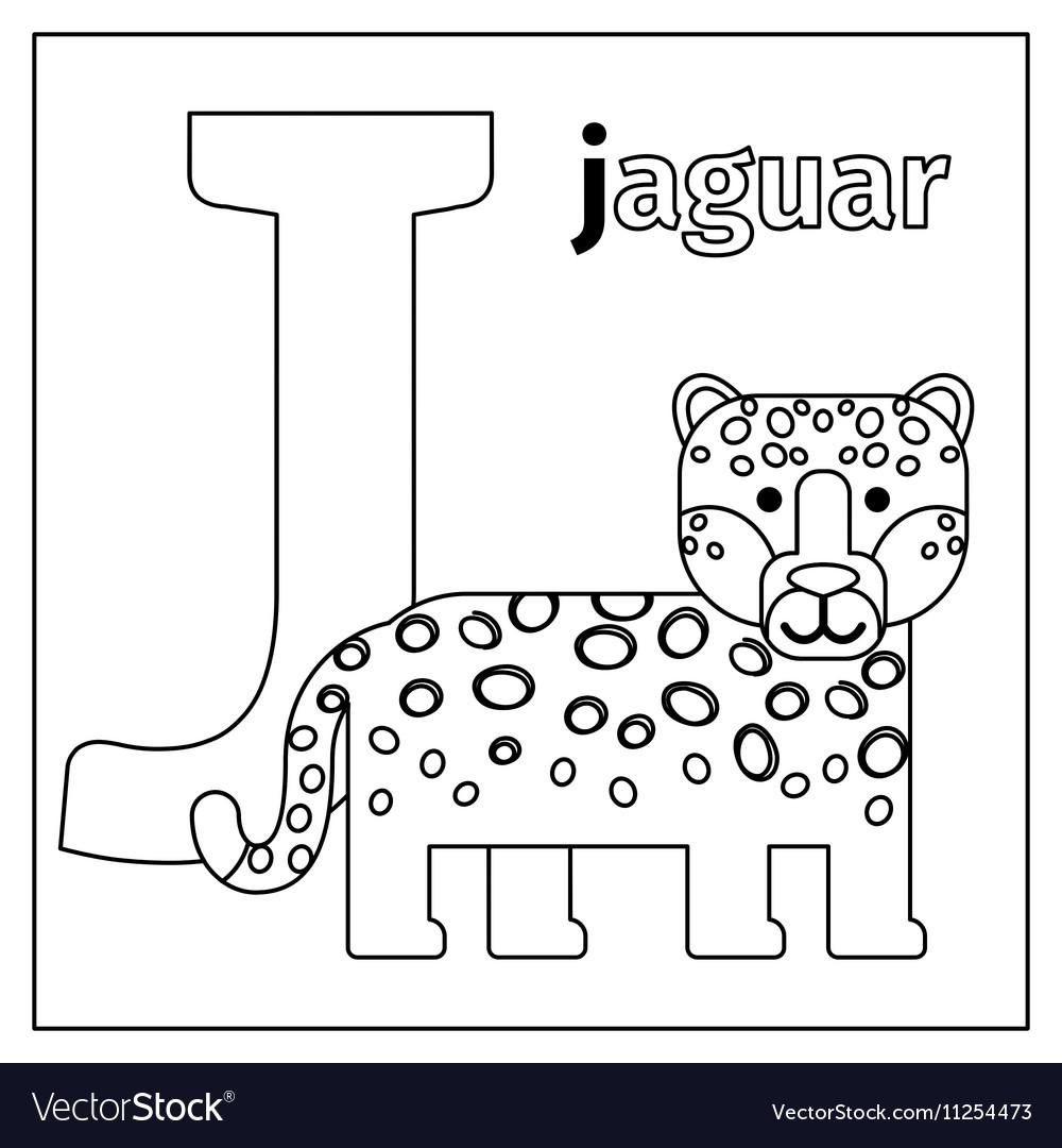 Jaguar letter J coloring page Royalty Free Vector Image