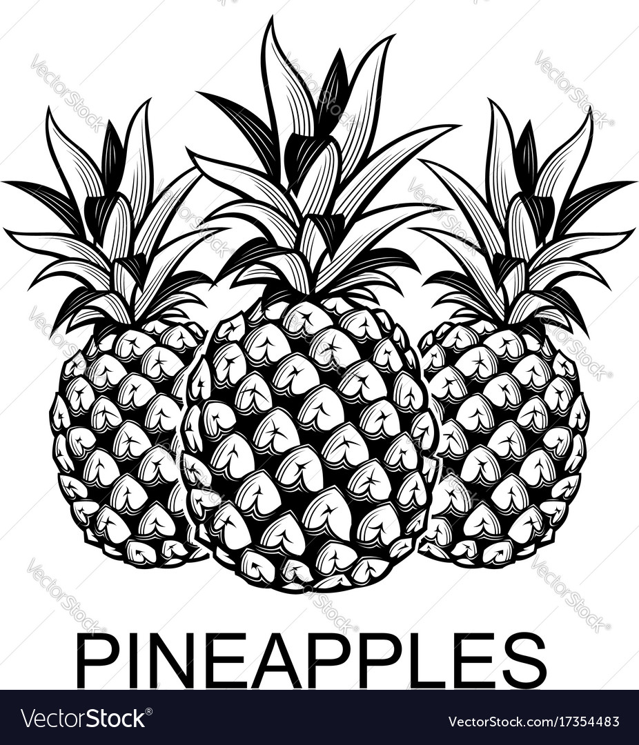 Image of pineapple fruits