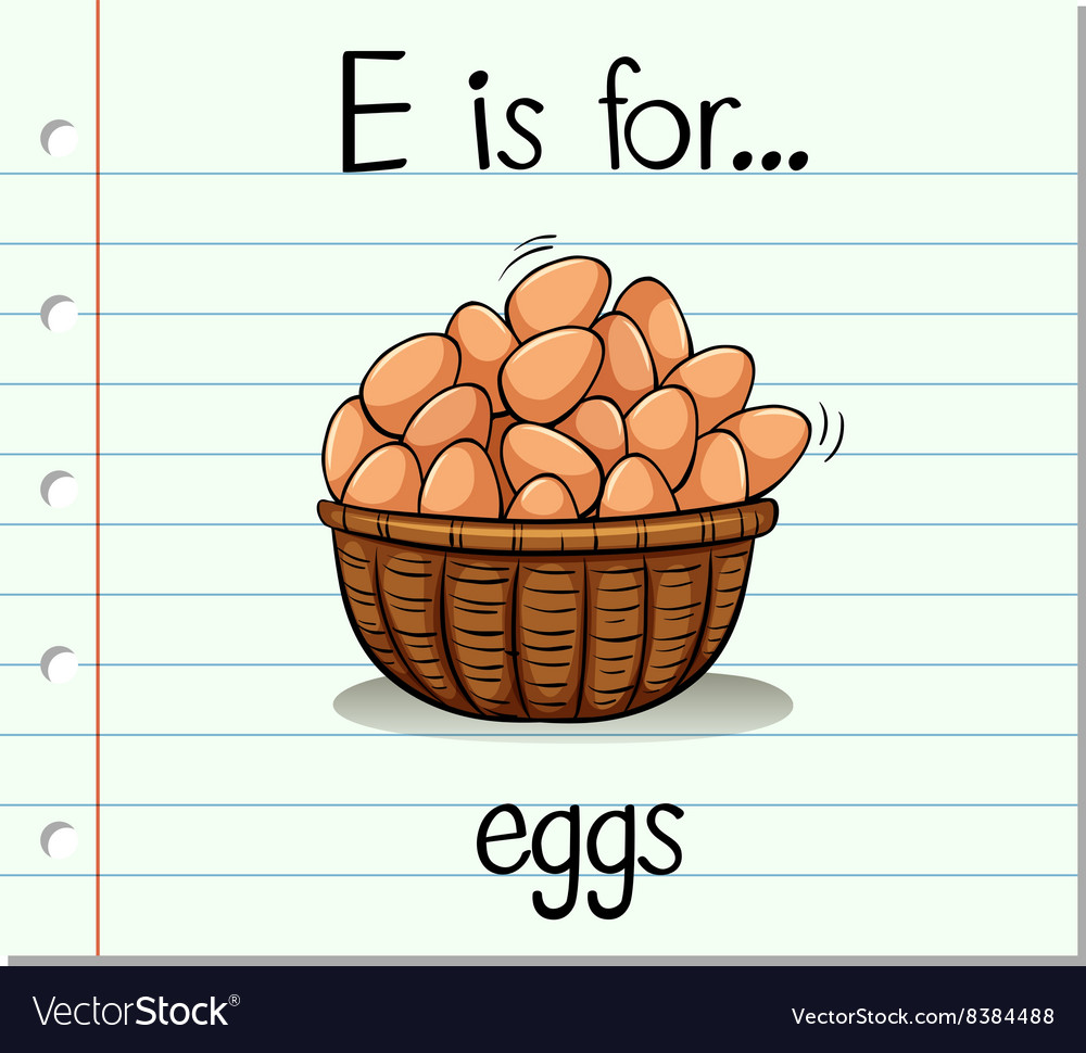Flashcard letter E is for eggs vector image