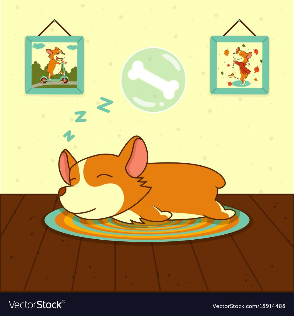 Sleeping cute welsh corgi dog on mat sweet puppy