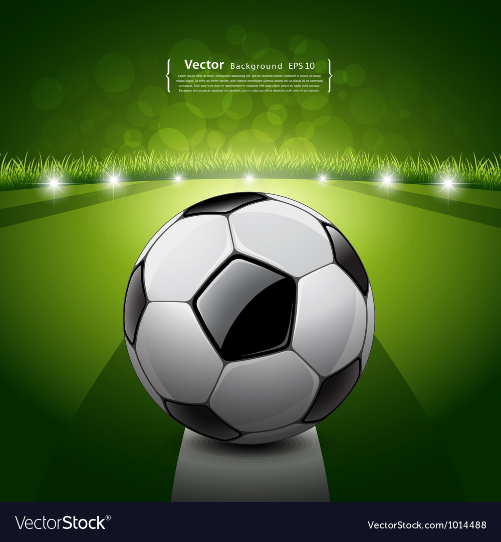 Soccer ball on green grass background vector image