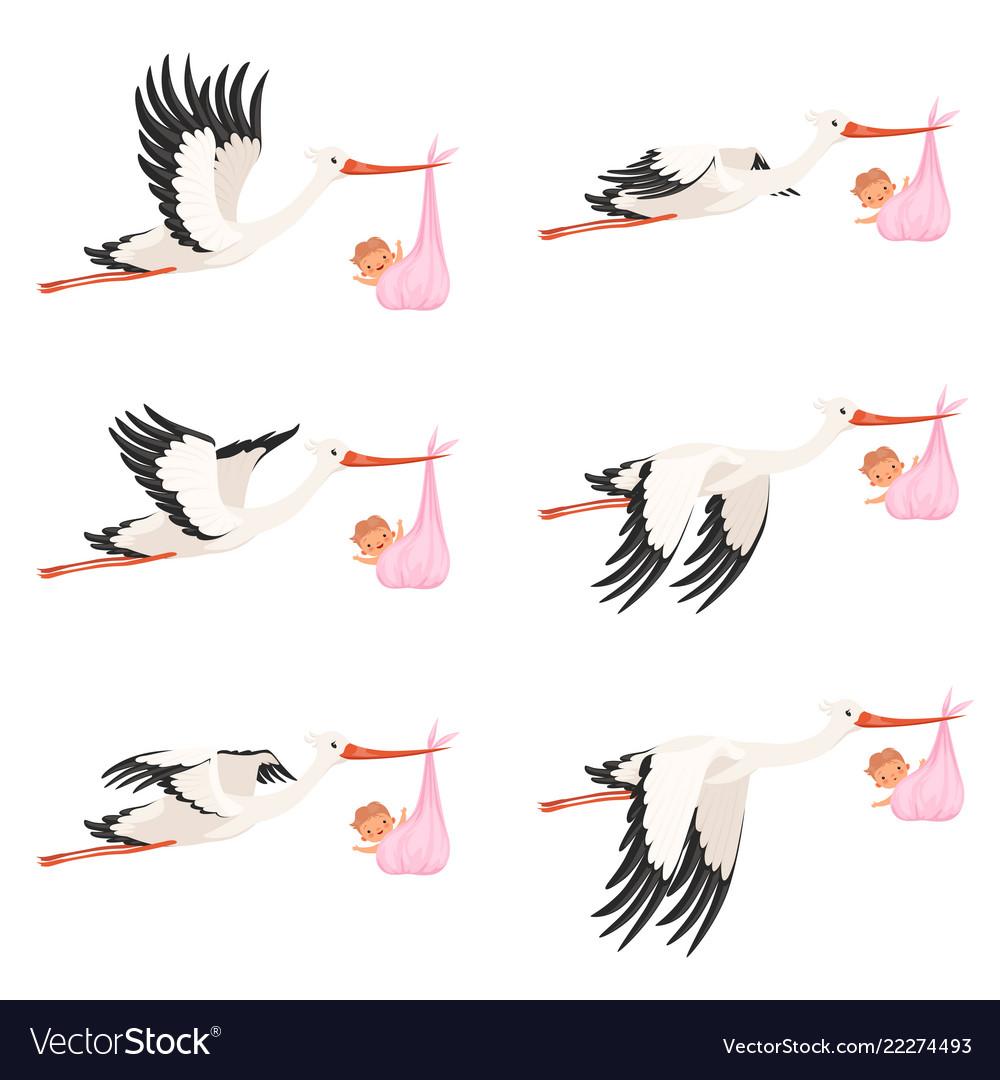 Flying stork frame animation bird delivery Vector Image