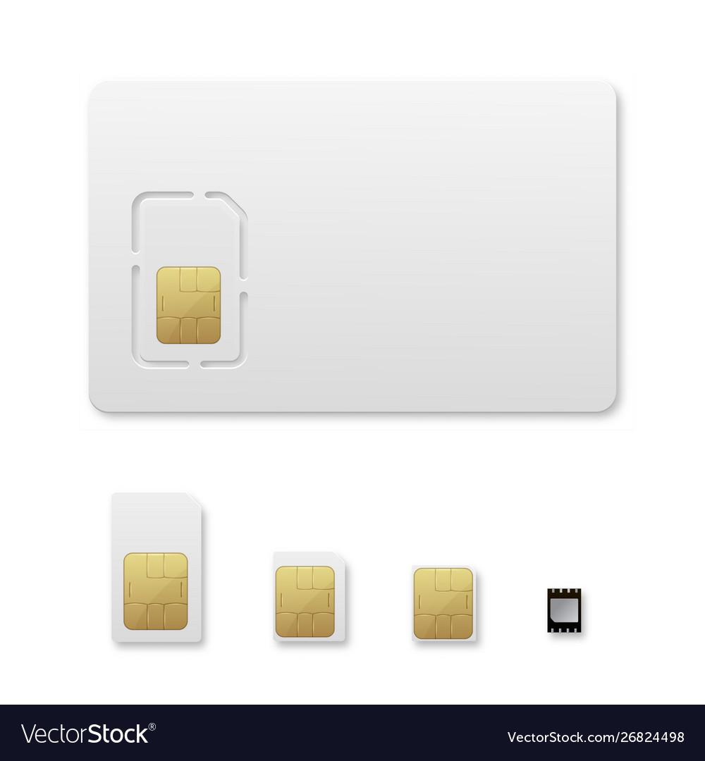 Sim card types realistic set