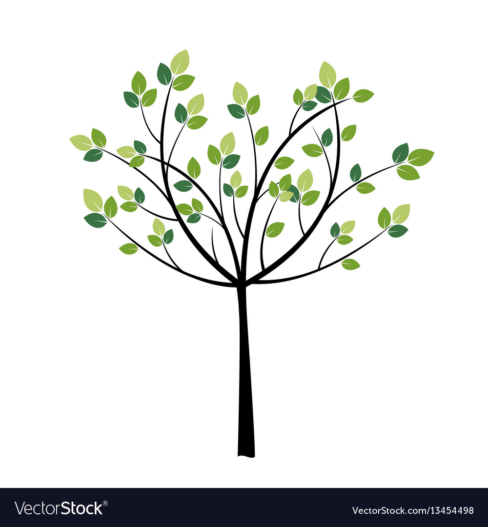 Tree with green trees vector image