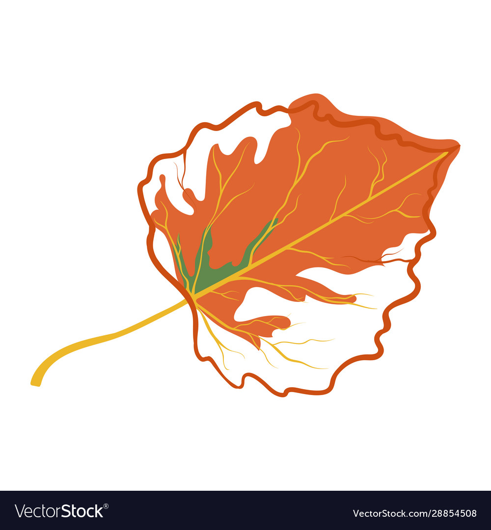Orange autumn leaf icon fall time symbol