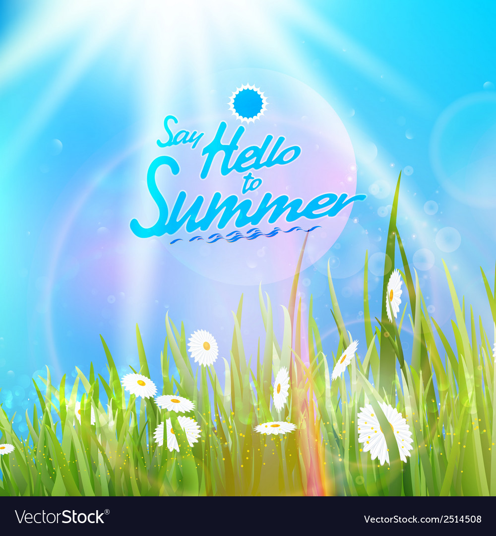 Sunny natural background with sun and grass