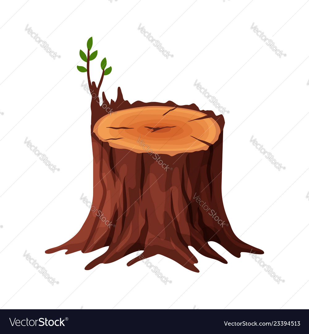 Cartoon old tree stump with cracks and roots