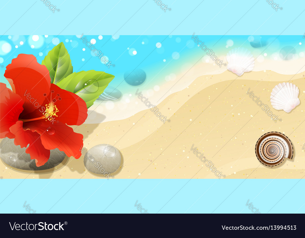 Sea background with red hibiscus vector image