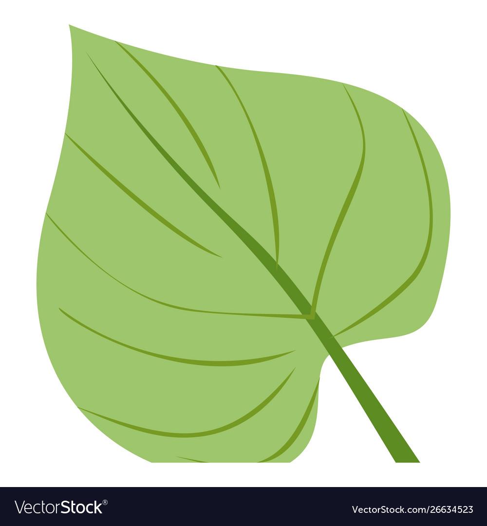 Big tropical leaf icon cartoon style