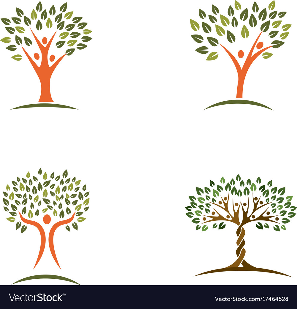 Family Tree Logo Design Template Royalty Free Vector Image
