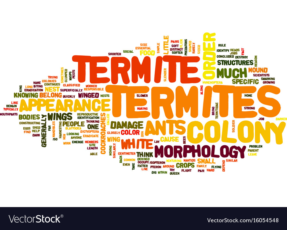 Termite appearance and morphology text background
