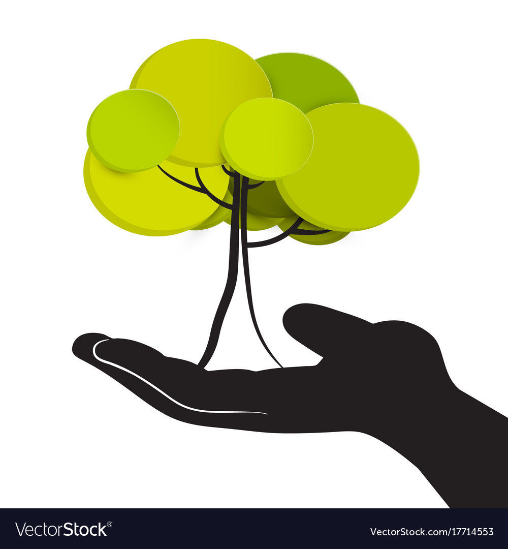Tree in human hand isolated on white background