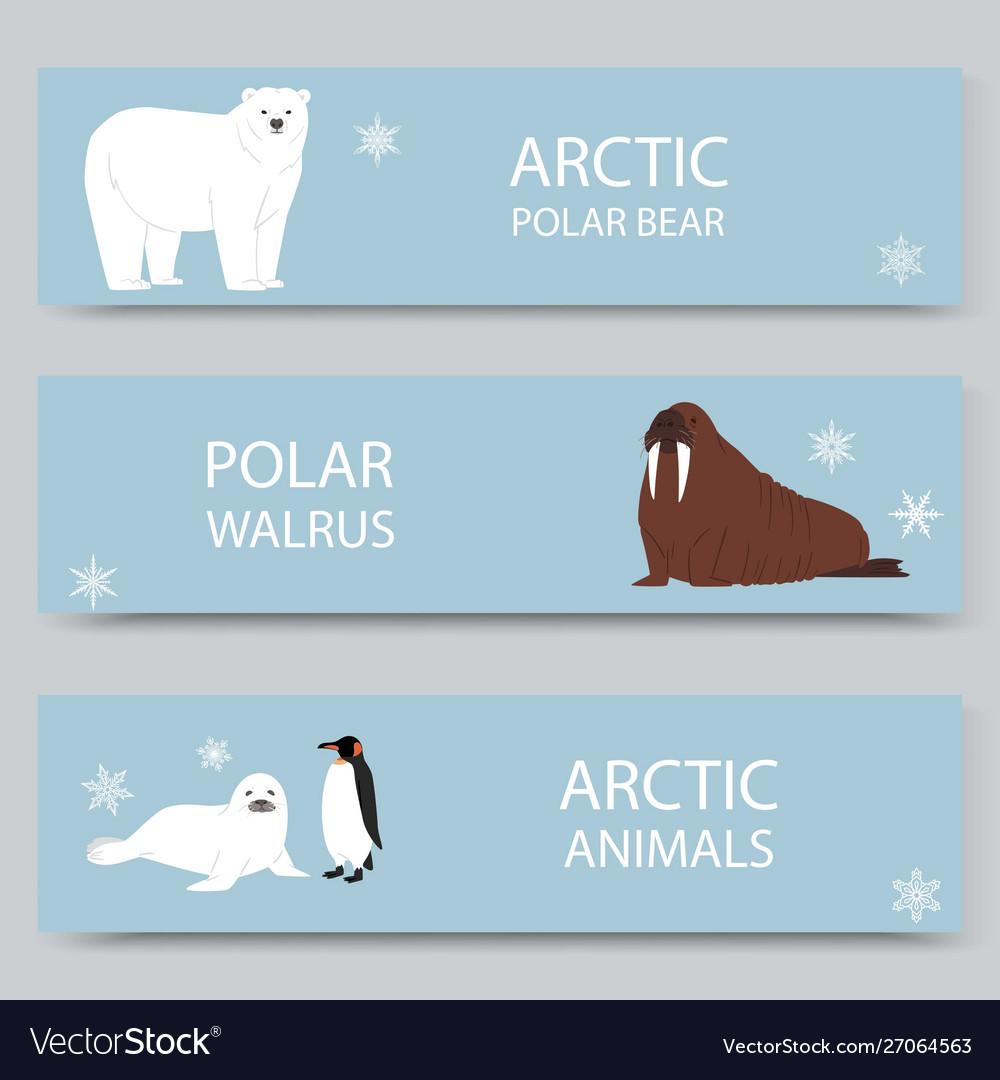 Arctic animals and north pole cartoon banners set