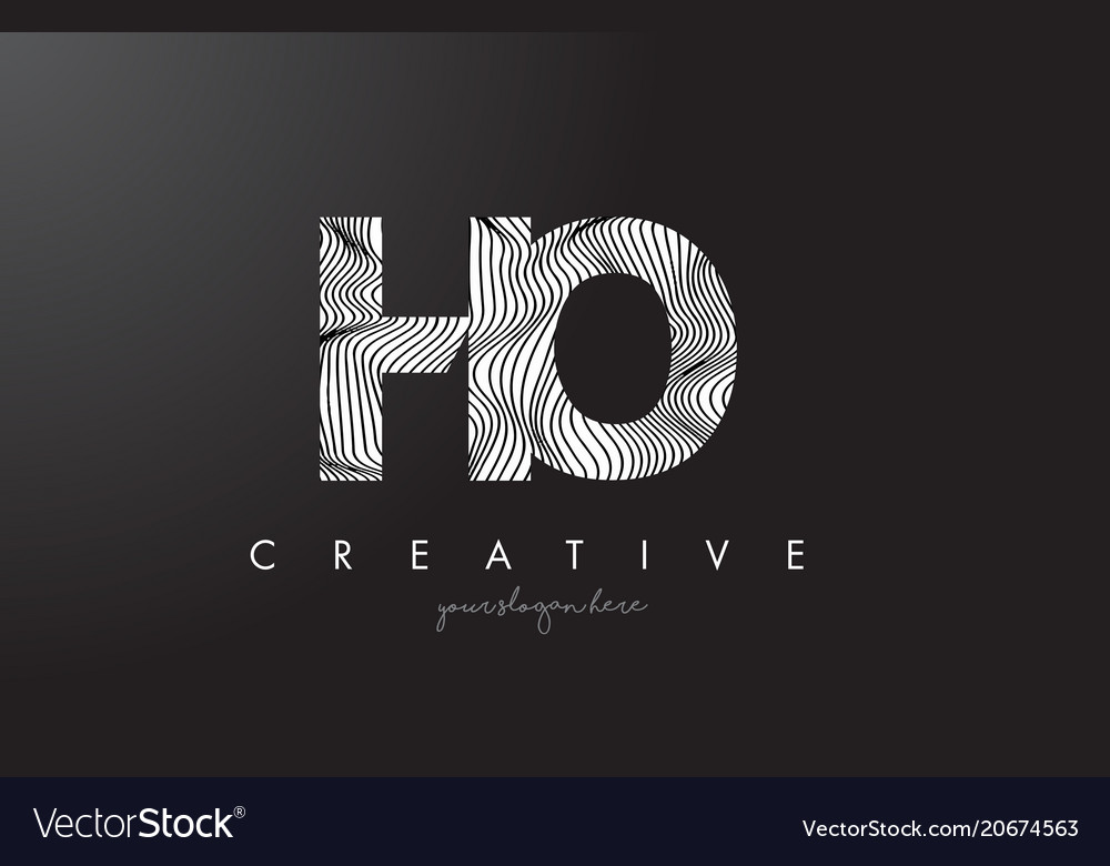Ho h o letter logo with zebra lines texture