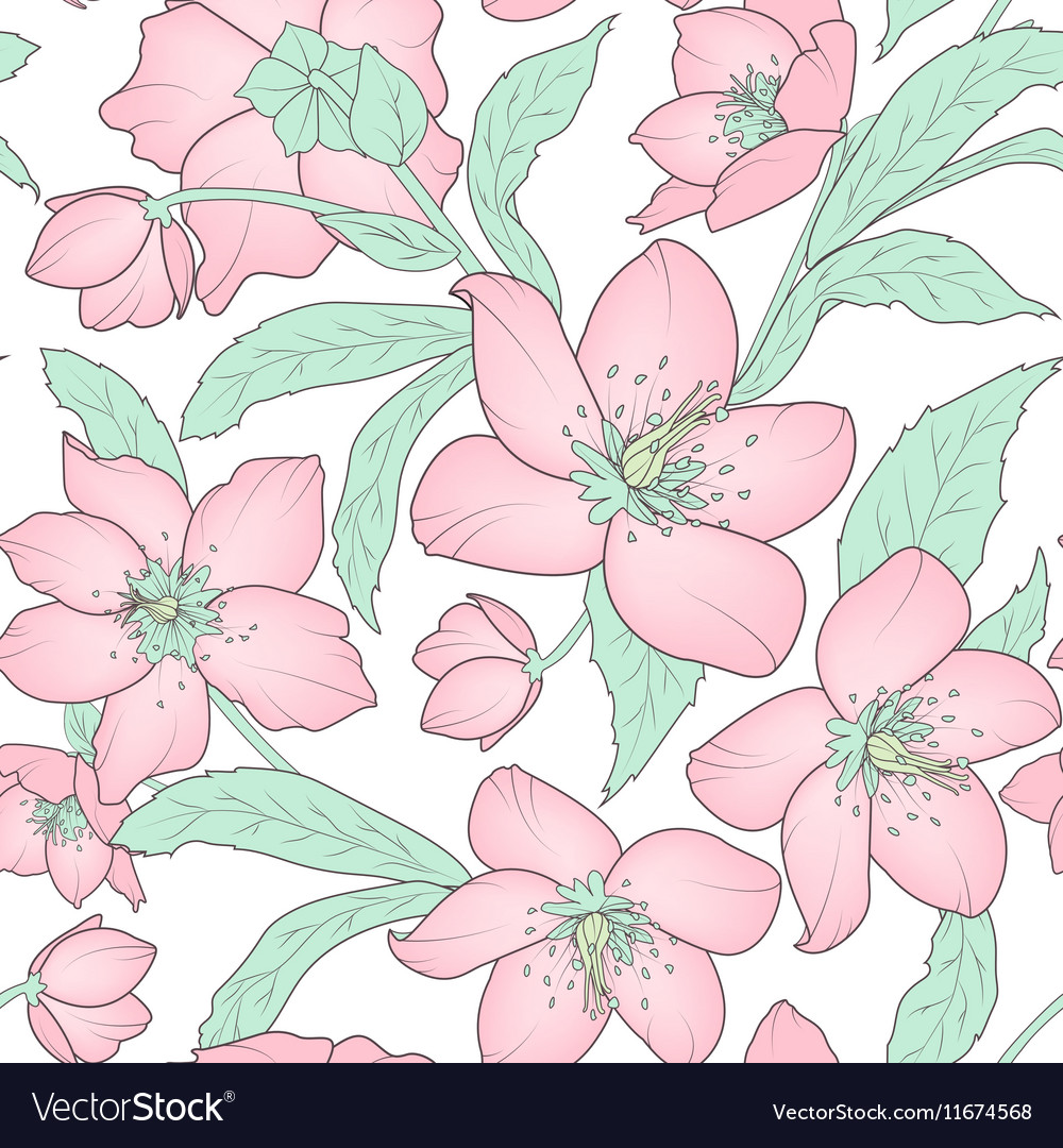 Hellebore floral seamless pattern pink green white