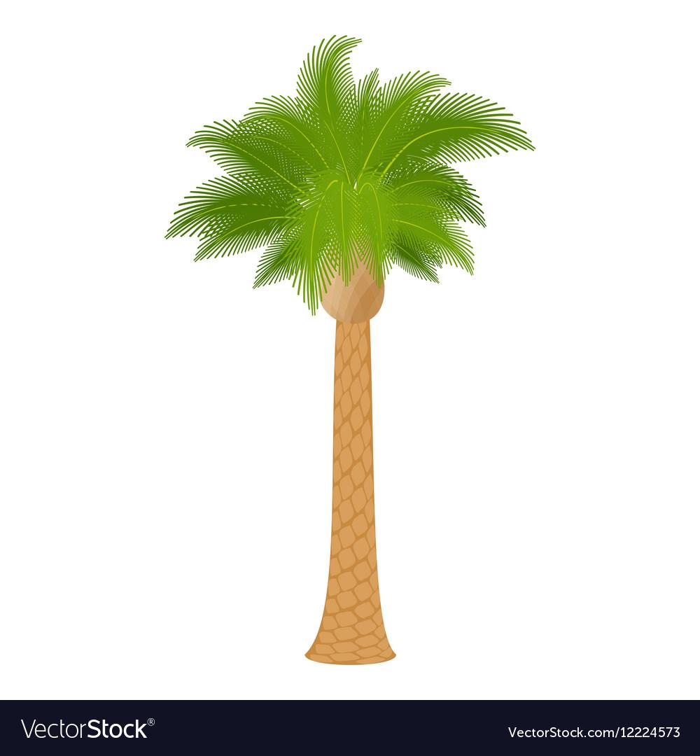 Hardwood palm icon cartoon style