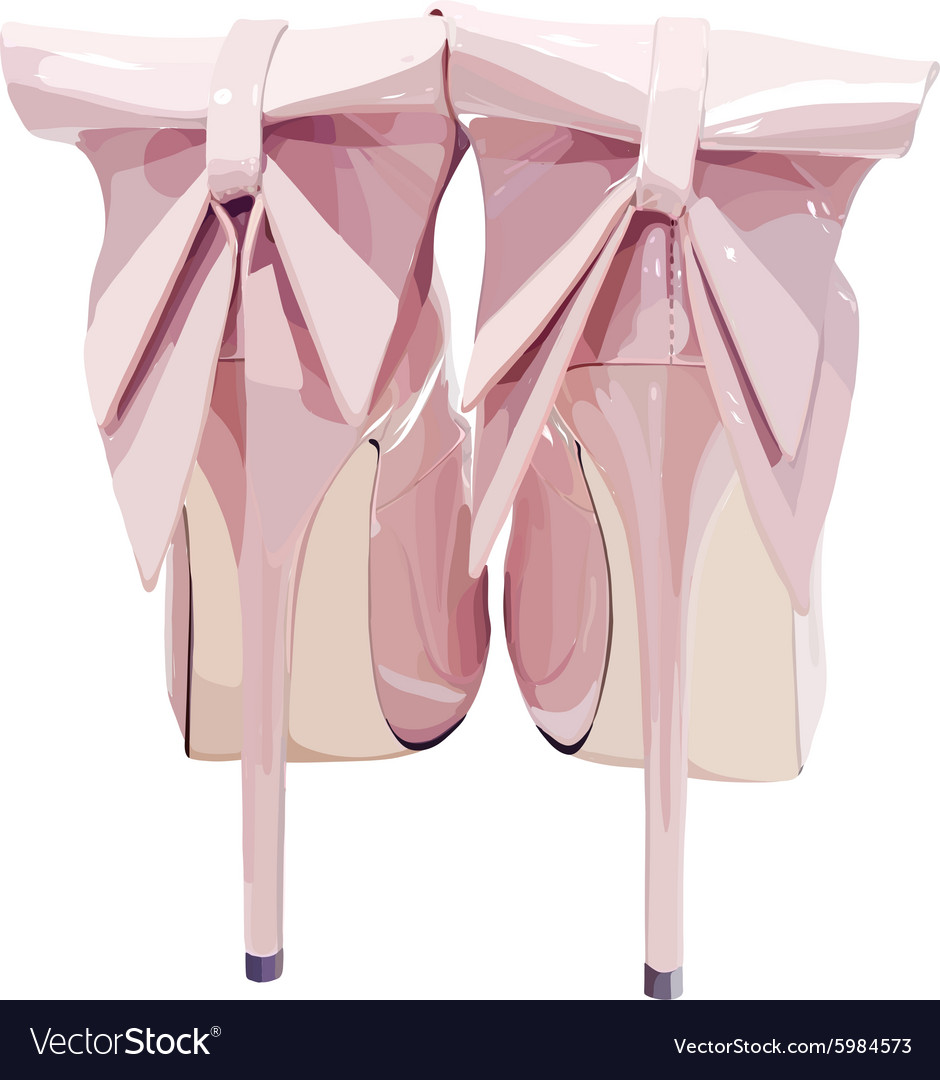 Picture of women shoe on white background vector image